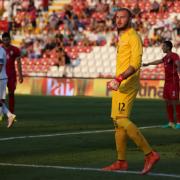 Udinese-Torino, formazioni ufficiali: Llorente unica punta, Nicola stupisce con Buongiorno